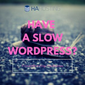 Slow WordPress Hindering You? Thumbnail
