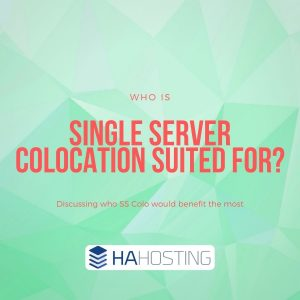 Who is Single Server Colocation Hosting Suited For?